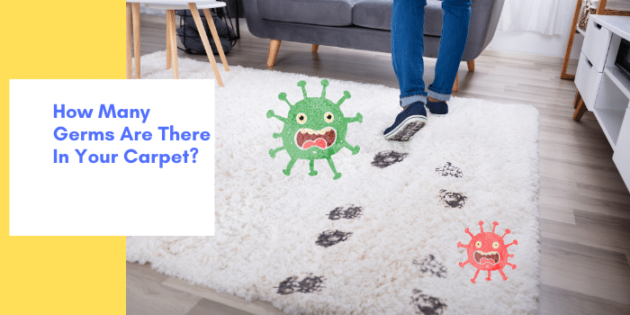 How Many Germs Are There In Your Carpet_